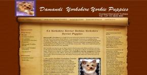 Damandi Yorkies