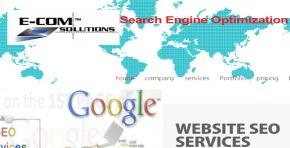 SEO Ecom Solutions