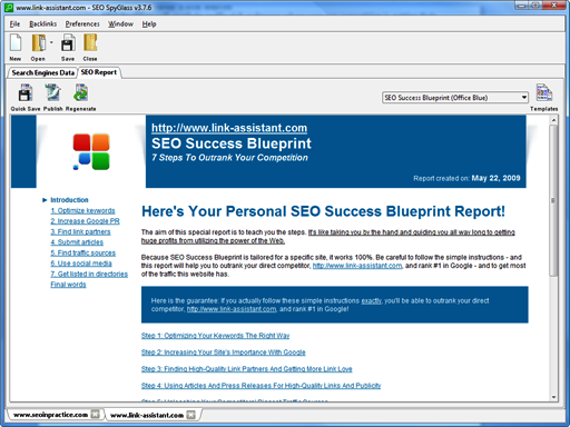 SEO Success Blueprint